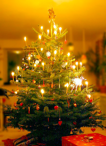 Brightly colored, well decorated tree.