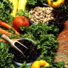 Dieting Myths Debunked - Calories from Protein, Fat, Carbs are Equal