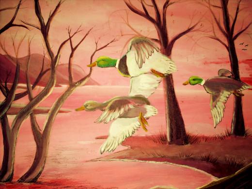 wild ducks fly their routes