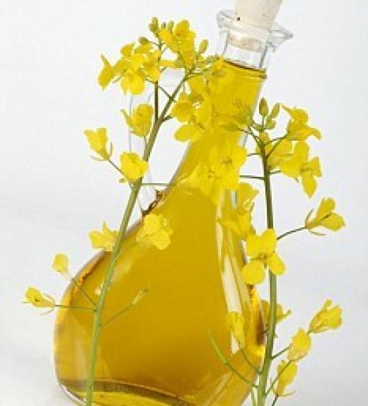 Rapeseed oil