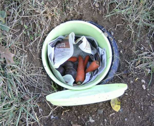 Just a bucket in the ground will preserve your roots.