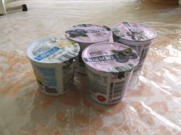 Store bought Yogurt