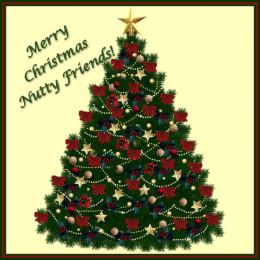 Merry Merry Christmas!!!