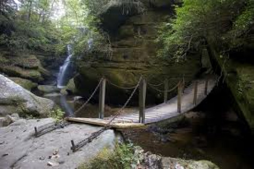 The sights are breathtaking at the Dismals. Their is no shortage of sights to see and things to do at the Dismals.