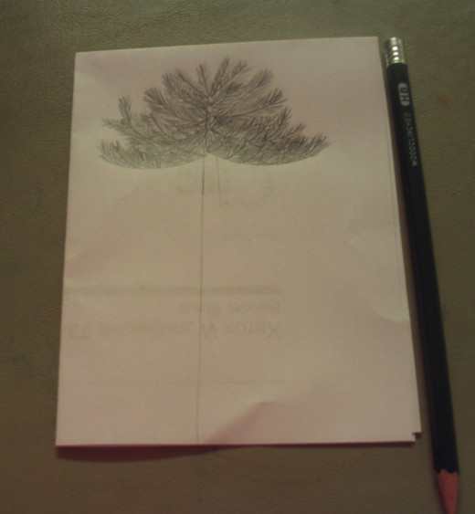 I started drawing the tree from top to bottom.