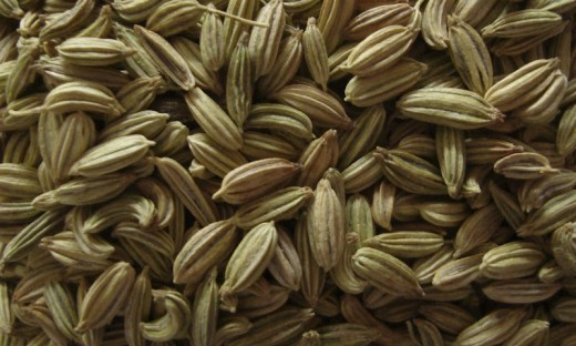 Anise or aniseed or fennel seeds or chotti saunf in Hindi
