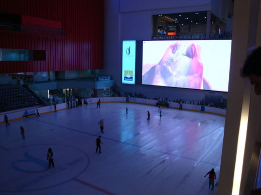 A large and fun ice rink in Dubai Mall.