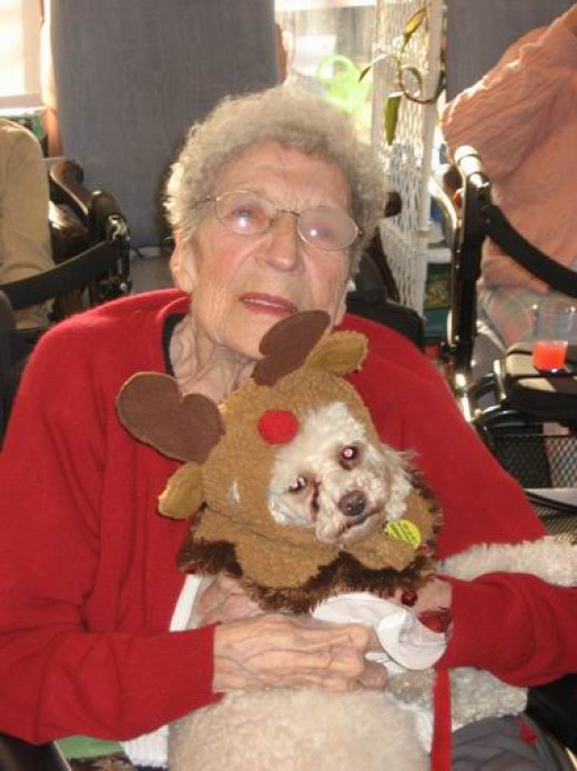 Mom with Romeo -  the Reindeer Poodle -  at the nursing home last Christmas.