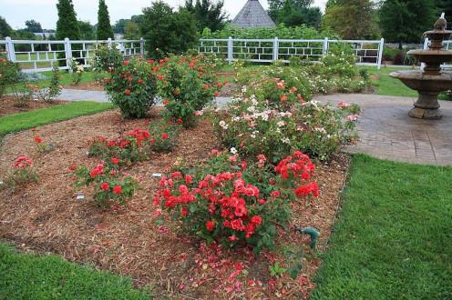 Western Kentucky Botanical Garden, Owensboro, Kentucky