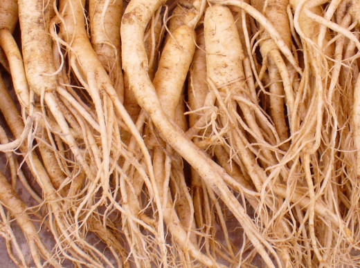 This is a picture of Ginseng root.