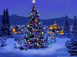 What are your plans this Christmas 2014?