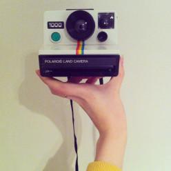 Polaroid Land Camera 1000 - Are they really still usable?!