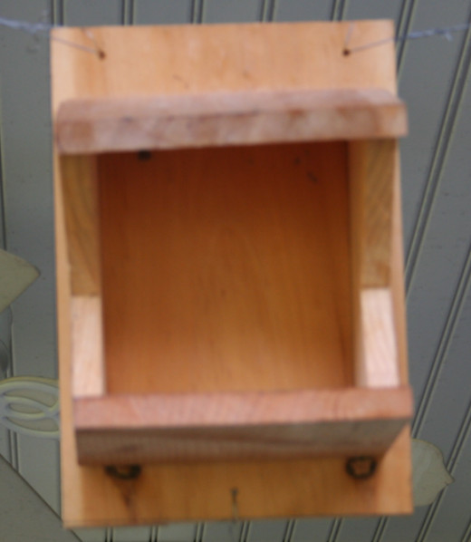 Platform nest box