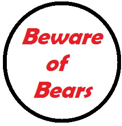 Use caution and proper wilderness etiquette when you encounter bears.