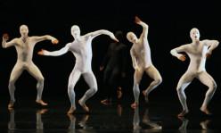 Interpretation of Confusion: Corporate Dance