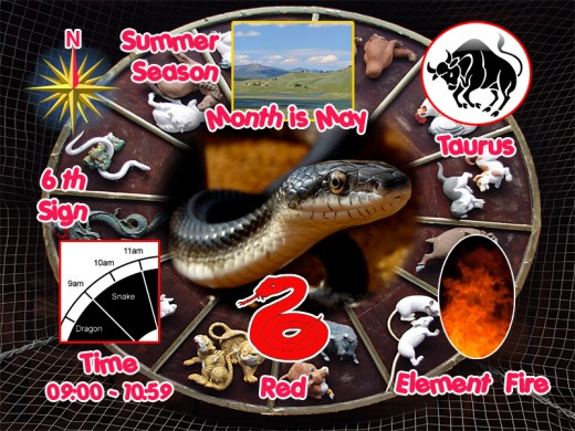 Attributes of the Snake in Chinese Astrology
