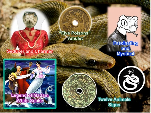 Chinese people admired and feared the Snake