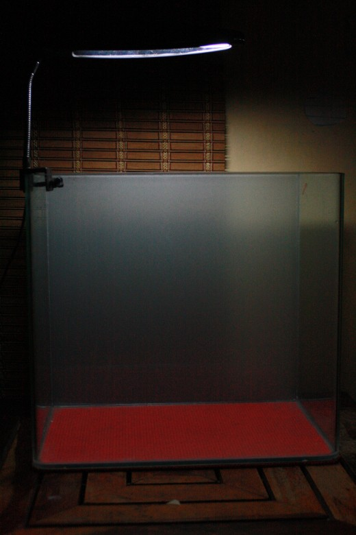 The Nano Tank with the frosted background. Tank dimensions approx 18 inches length x 14 inches height x 8 inches width