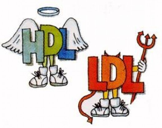 HDL is the good cholesterol. LDL is the bad cholesterol.