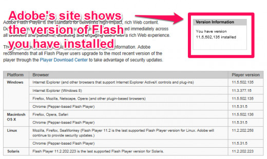 Figure 5.1 : Adobe's site shows the version of Flash installed