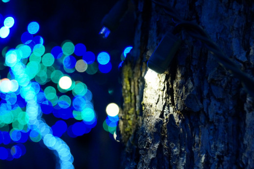 Blue and Green Lights With Tree