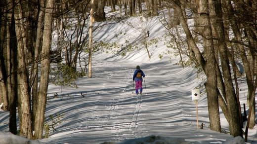 A brightly dressed skiier, Senjogahara, Nikko, Japan.