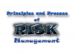 Principles and Process of Risk Management