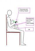 How to Trim Your Indoor Cat's Claws – Easy DIY Method