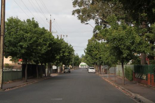 Street Scene in Adelaide