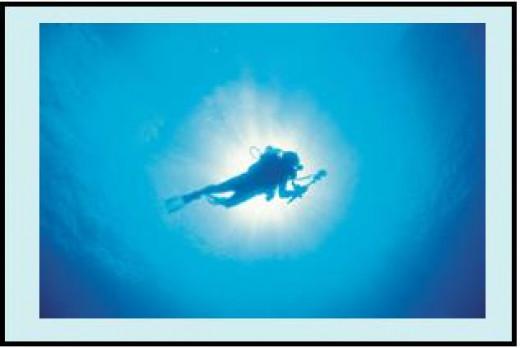 SCUBA divers are susceptible to Decompression Sickness.