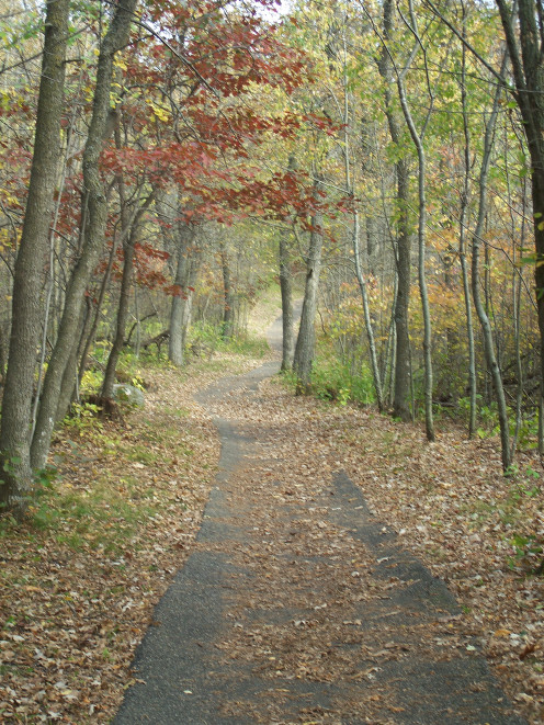 Path in Inspiration Peak State Wayside Park in Otter Tail County, Minnesota.