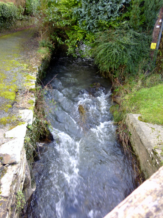 A stream gushing by.