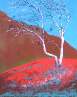 Windswept Birch on Dartmoor.  Unison Pastel on Fisher 400 Paper
