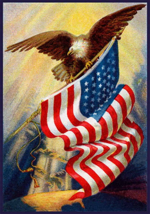 The Eagle, a symbol used by America and in the Bible for strength and courage.   Our Founding Fathers did not choose the eagle as our nation's symbol by chance!