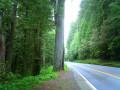 Car Maintenance Checklist for Road Trips