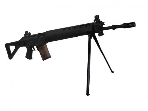 Sig 550, standard issue to Swedish men in a country with low rates of gun violence.