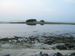 Island's  Meet