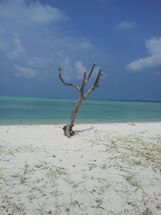 Minicoy Beach