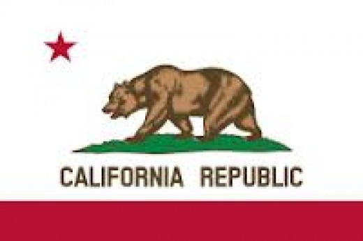 We pledge allegiance to the bear....