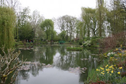 The pond with the Japanese footbridge and water lillies.