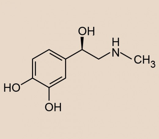 Chemical Structure of Adrenaline (Epinephrine). This is a hormone that plays an important role in fight or flight response