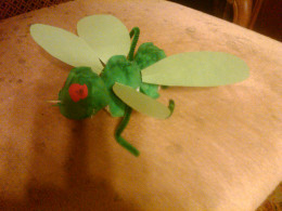 My son's cricket