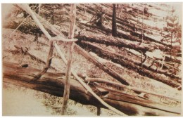 These photos were made in 1927, almost two decades after the catastrophic event at Tunguska.