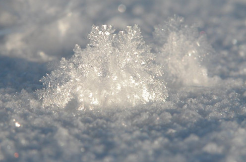 Frost Particle on Ice