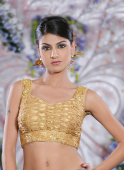 Must Have Saree Blouse Designs for 2013