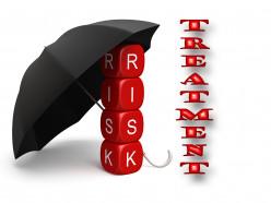 Risk Treatment Plan