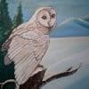 whonunuwho profile image