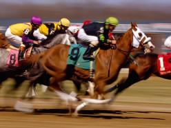 Horse Racing News: 1/7/2013