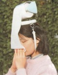 Simple and long lasting Hayfever Remedies - Hayfever Pollen Allergy Relief