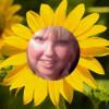 WriterGirlHeather profile image
